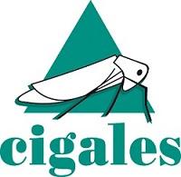 LES CIGALES